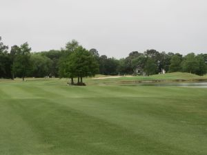 Cotton Creek hole# 3: Par 5 (571/551/509/465)
