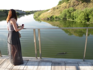 Kelly and I watching the alligators outside the clubhouse at Streamsong Resort