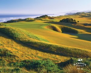 15th hole at Bandon Dunes (courtesy of website)