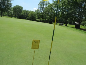 One heck of a closest-to-the-hole by Kevin Redden on the par 3 7th