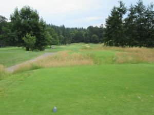 Witch Hollow hole 8: Par 4 (382/360/329/317/280)