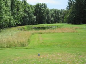Witch Hollow hole 12: Par 3 (143/127/109/109/92)