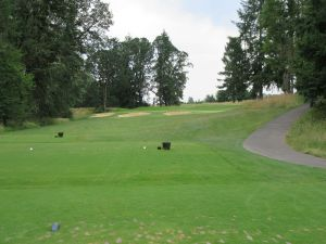 Witch Hollow hole 15: Par 3 (175/157/141/141/126)
