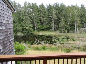 The lily pond from our balcony at the Lily Pond cottages at Bandon Dunes Golf Resort