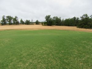 Settlement right of the green on the par three 3rd hole at Sand Valley Golf Resort
