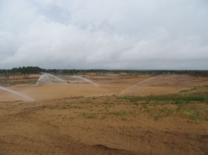A look out at the eighteenth and part of the back nine at Sand Valley Golf Resort