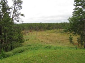 A look out at the property to be used for [the second] David McLay Kidd course at Sand Valley Golf Resort in Rome, WI