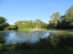 First view of the Island Hole at Silver Spring Country Club