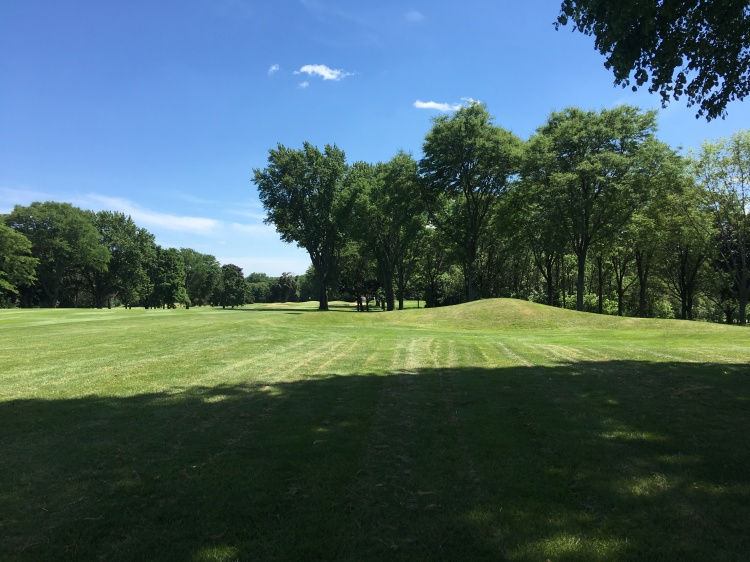 Right side of 15 in trees